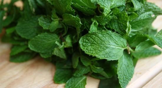 Tangiers: Cane mint (Тростниковая мята). Nakhla: Лимон