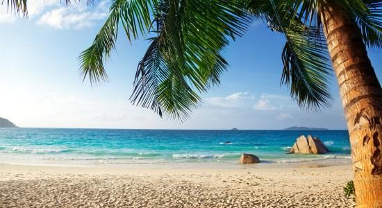Nakhla: Кальян на пляже. Al Fakher: Двойное яблоко, Жасмин