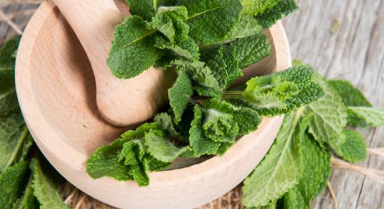 Nakhla: Мята. Tangiers: Cane mint (Тростниковая мята). Afzal: Мята